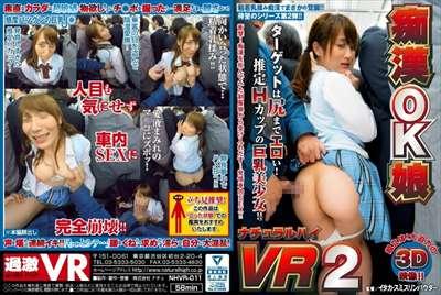 痴漢OK娘 VR 2